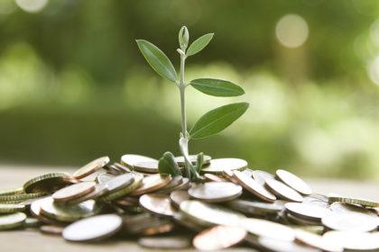 Economische groei_plant_BVO